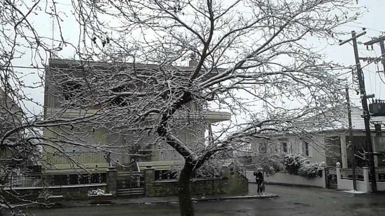 χιονι3 φαρσαλα 180116