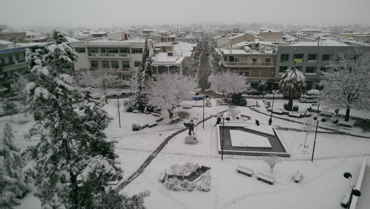 χιονια απο δημαρχείο