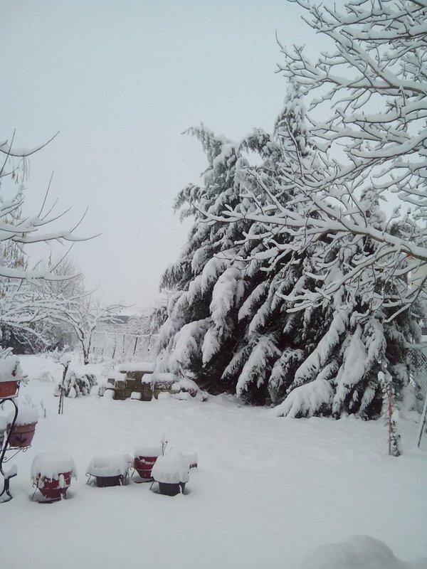 χιόνι Νικη κατσιαούνη
